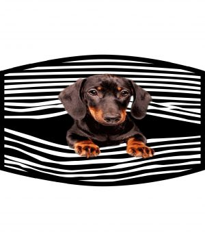Fask Mask - 3 Layer - Dachshund Peek-a-Boo