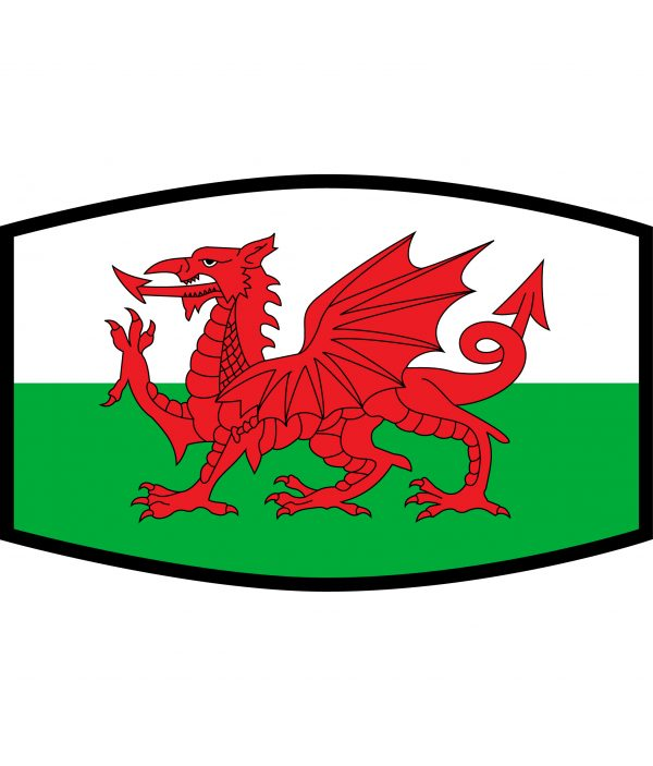Fask Mask - 3 Layer - Flag - Wales